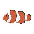 coral-acuario
