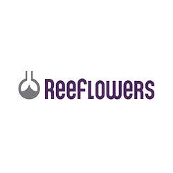 Reef Flowers