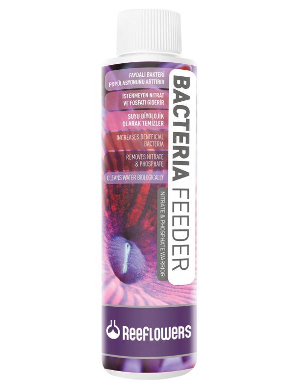 Reeflowersbacteriafedeer